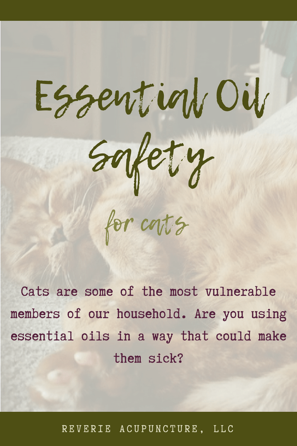 Cats are some of the most vulnerable members of our household. Are you using essential oils in a way that could make them sick?