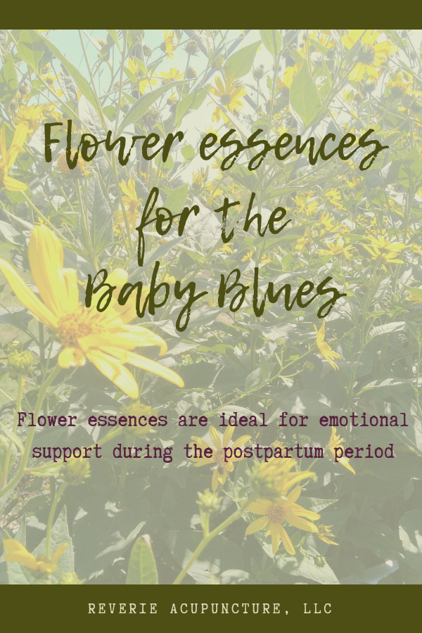 Flower essences are ideal for emotional support, and are a great supplement to care during the postpartum period