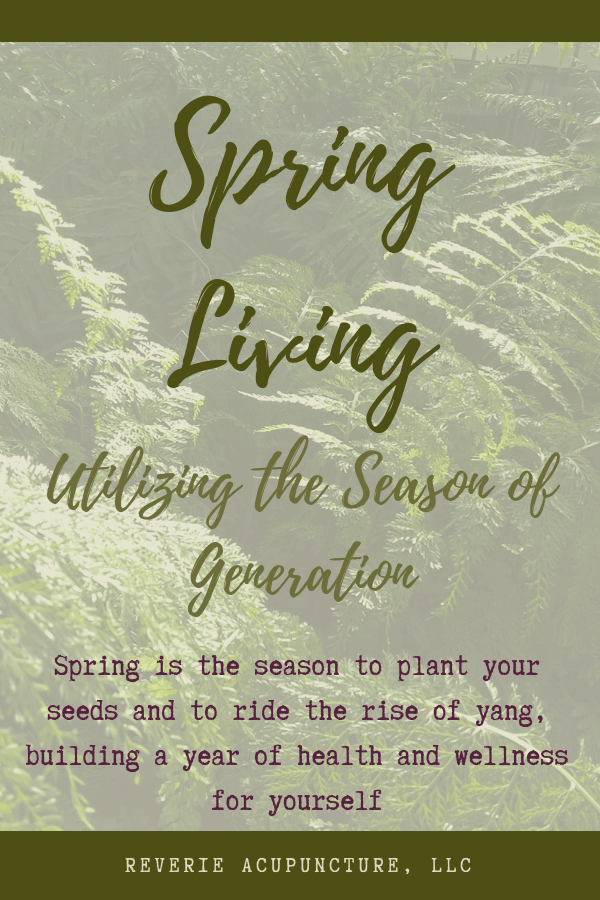 Spring is the season to plant your seeds and to ride the rise of yang, building a year of health and wellness for yourself
